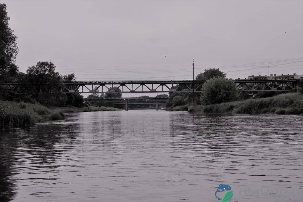 Rzeka Warta - Oborniki