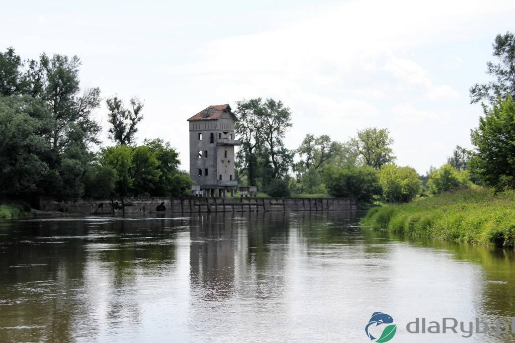 Powiat poznański i rzeka Warta