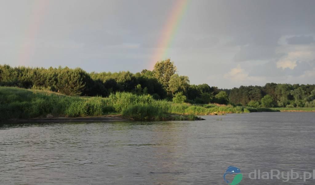 Tęcza nad rzeką Wartą